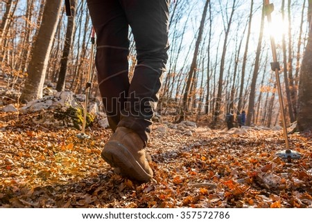 Closeup of trekking shoes. Person walking in autumn forest. - stock photo