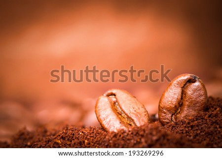 Closeup of two coffee beans macro at roasted coffee heap. - stock photo