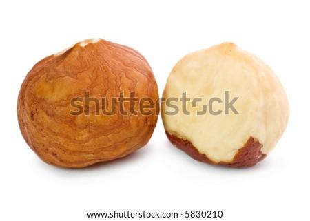 Closeup of two hazel nuts kernels isolated on white background. - stock photo