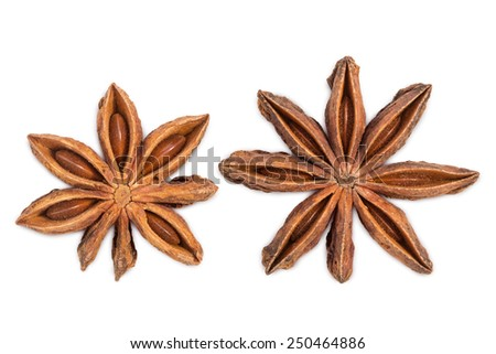 Closeup of two star anises (star aniseed or Chinese star anise), isolated on white background