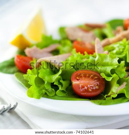 Closeup of vegetable salad with tuna - stock photo