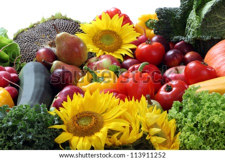 Closeup of vegetables with cabbage and sunflower - stock photo
