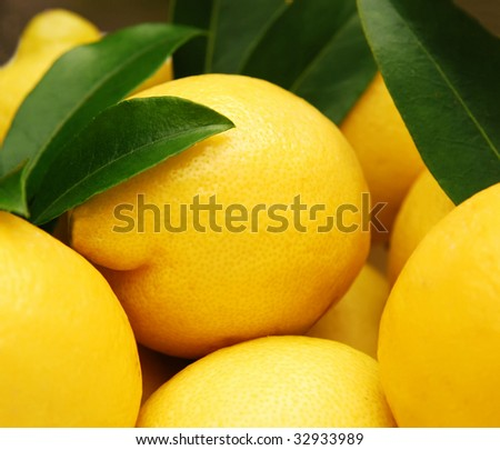 closeup of vibrant yellow lemons, shallow depth of field - stock photo