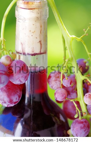 Closeup of wine botle and grapes
