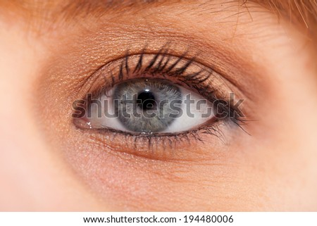 Closeup of young woman blue eye with day makeup