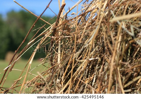 Closeup on a stack of straw for an agriculture background - stock photo