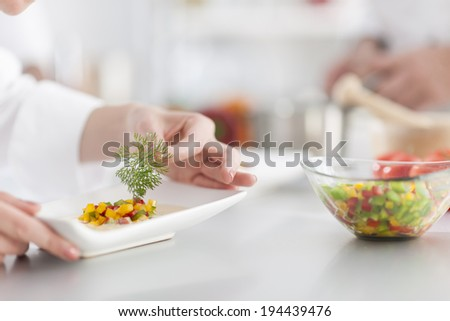 closeup on chef's hands garnishing a plate - stock photo