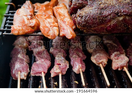 Closeup on pork ribs, steak and lamb kebabs on the openair grill  - stock photo