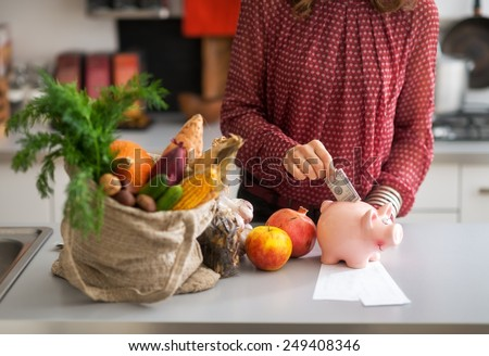 Closeup on young housewife putting money into piggy bank after shopping on local market - stock photo
