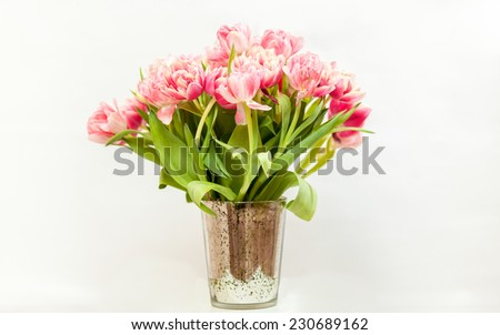 Closeup photo of big bunch of pink tulips against white background - stock photo