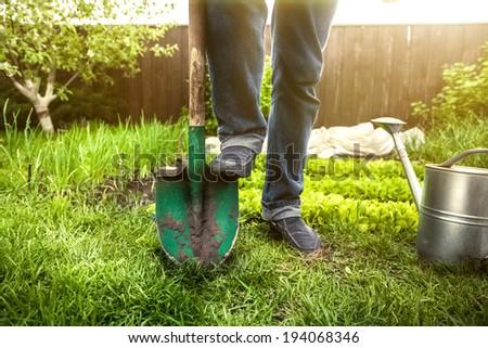 Closeup photo of man holding foot on shovel at garden at sunny day - stock photo