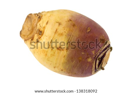 Closeup photo of Turnip, also called Brassica rapa, isolated on a white background - stock photo