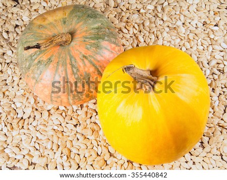 Closeup photo of two gourds standing on mass of pumpkin seeds - stock photo