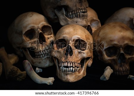 Closeup Pile of skulls and animal bones on black fabric background, Genocides concept still life style. - stock photo