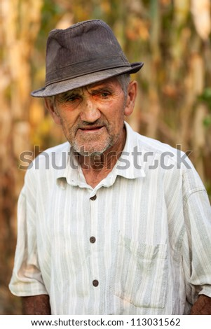 Closeup portrait of a pensive senior man, outside in front of a corn field - stock photo