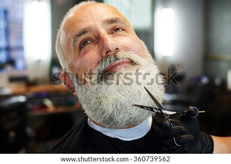 closeup portrait of bearded senior man in barber shop. barber cutting beard with scissors