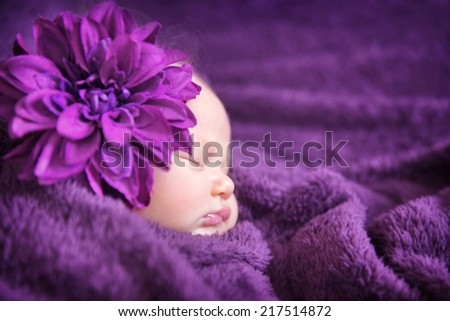 Closeup portrait of cute newborn girl sleeping wrapped in purple soft blanket, wearing stylish head flower, baby fashion concept - stock photo