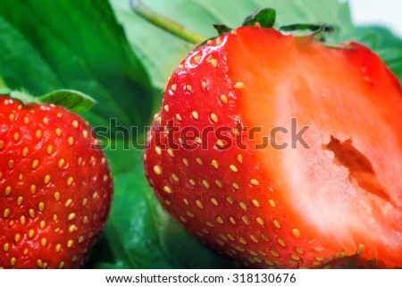 Closeup presents cut along the ripe berry of strawberry with tender flesh. - stock photo