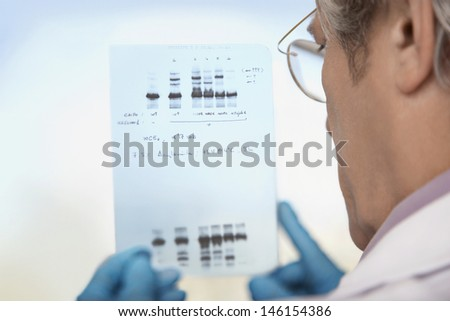 Closeup rear view of a cropped male scientist looking at DNA test results - stock photo