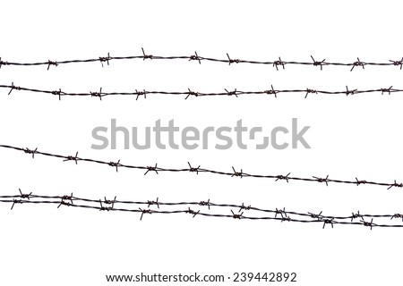 Closeup rusty barbed wire isolated on white.