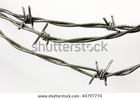 Closeup shot of barbed wire shot on white background - stock photo