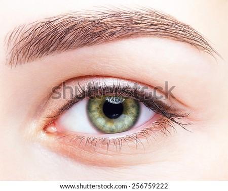 Closeup shot of female green pistachio colour smizing eye  with day makeup - stock photo