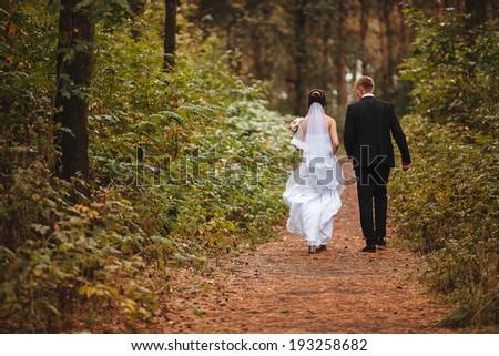 closeup shot of newlyweds hands - stock photo
