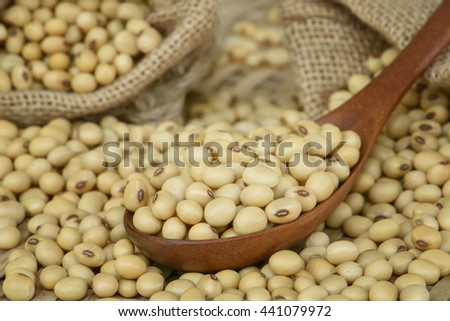 Closeup Soy bean on wooden spoon - stock photo