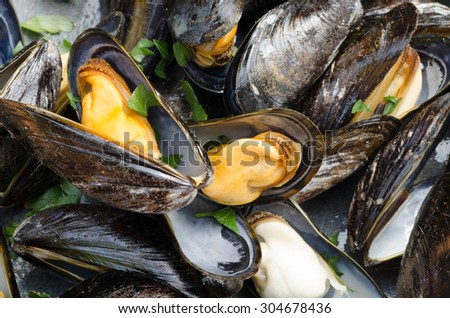closeup to tasty boiled mussels - stock photo