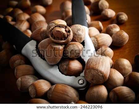 Closeup view of hazelnuts and pliers for opening nutshell. - stock photo