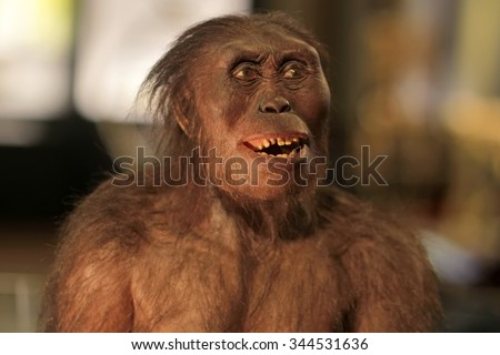 Closeup view of one plastic or wooden toy figure of chimp monkey with brown hair on blurred backdrop, horizontal picture - stock photo