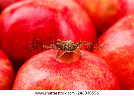 Closeup view of red pomegranate - stock photo