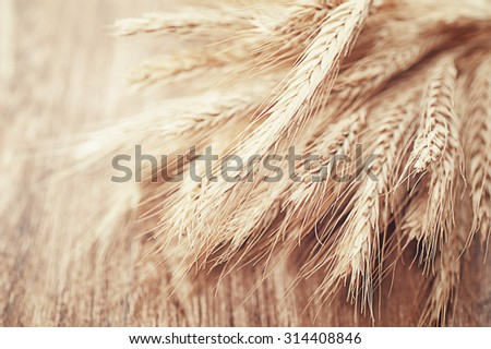 closeup wheat on wooden table. natural vintage background - stock photo