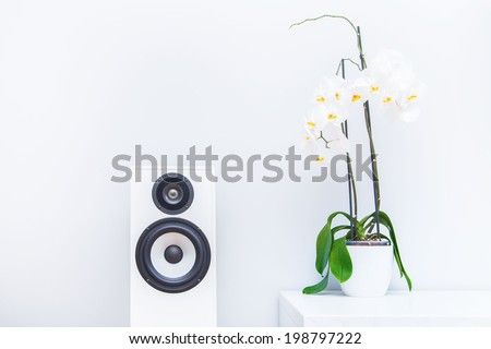 Closup of a flower and stereo speaker - stock photo