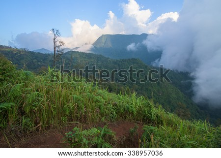 Cloud forests mountain in northern thailand have beautiful - stock photo