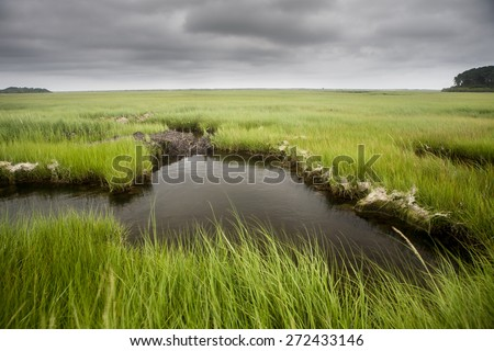 Clouds drift over a salt marsh on Cape Cod, Massachusetts. Marshes all over the world are vital habitats for many species of fish, invertebrates, and migrating birds. - stock photo