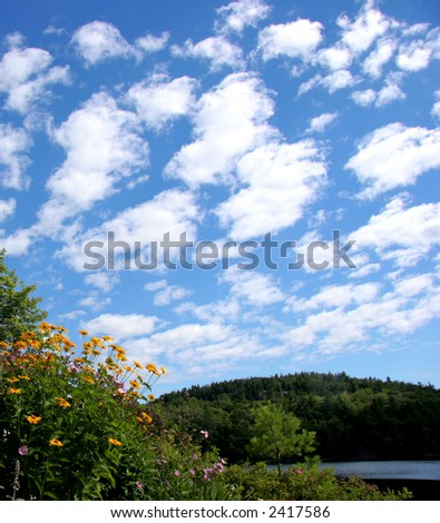 Clouds over a flower bed - stock photo