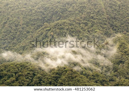 Clouds rising from primary montane rainforest in the Rio Quijos Valley, Ecuador. Rainfall in the Amazon basin is recycled into the atmosphere by transpiration from the trees.