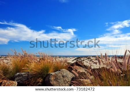 Cloudy blue sky at the beach - stock photo
