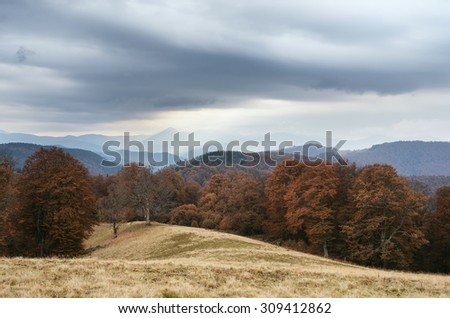 Cloudy day in the mountains. Autumn Landscape with beech forest. Carpathians, Ukraine, Europe - stock photo