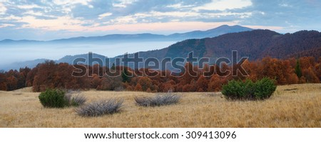 Cloudy morning in the mountains. Autumn landscape panorama with beech forests. Carpathians, Ukraine, Europe - stock photo
