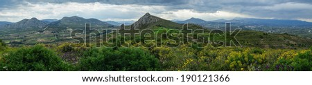 Cloudy mountain landscape with yellow flowers