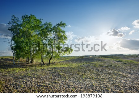 Cloudy sky and sunlight over sandy desert - stock photo