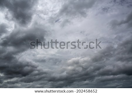 Cloudy sky full of deep grey clouds. Storm is coming. And bird - stock photo