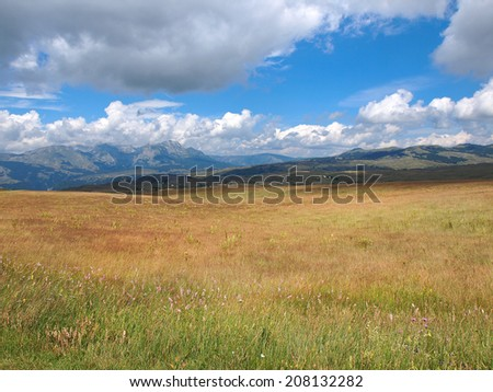 cloudy sky over mountain Durmitor and wild flowers - stock photo