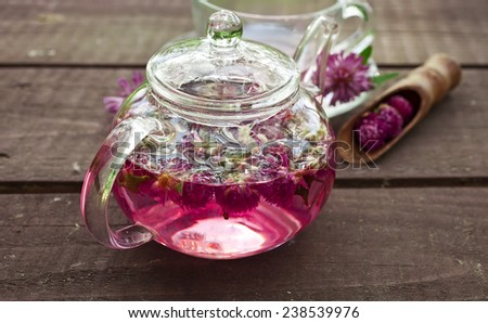 Clover flower tea in the glass teapot on a wooden table  - stock photo