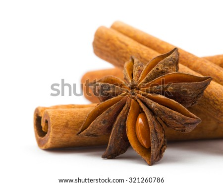 Cloves, anise and cinnamon isolated on white background - stock photo