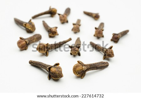 cloves close-up - stock photo