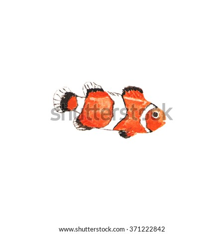 Clown-fish watercolor illustration. Hand drawn fish on white background.