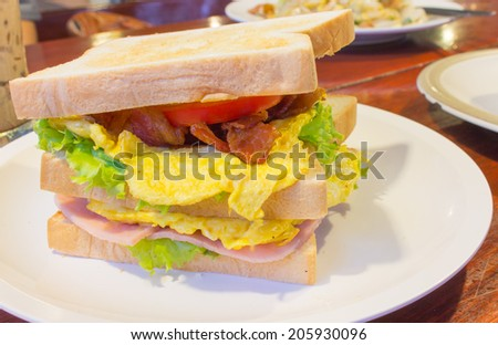 Club sandwich on white plate